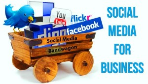 THE INCREASING TREND OF ONLINE BUSINESSES THROUGH SOCIAL NETWORKS