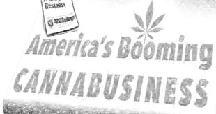 Buying and Selling Cannabis Businesses in US
