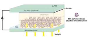 Molecular Linker to Quantum Dots Sensitized Solar Cells