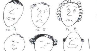 Facial Expressions Activity