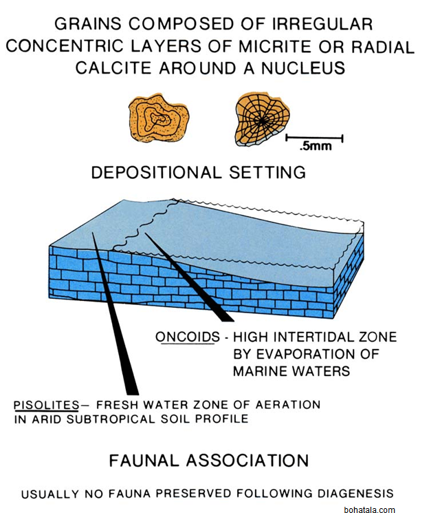 Oolites, Pisolites and Laterites Formation and Composition