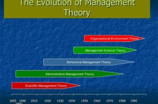 The Role of Management Theories in Workplace