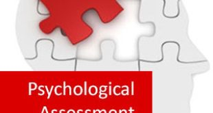 psychological assessment example