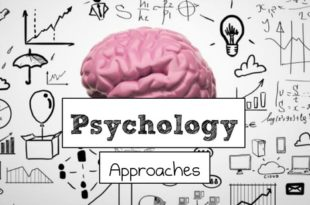 Psychological Assessment And Management Example