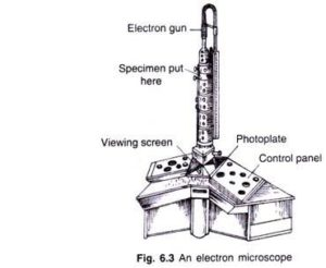 MICROSCOPE AND ITS TYPES