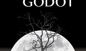 """The Play """"Waiting for Godot'' is about Vacuity of Language"""