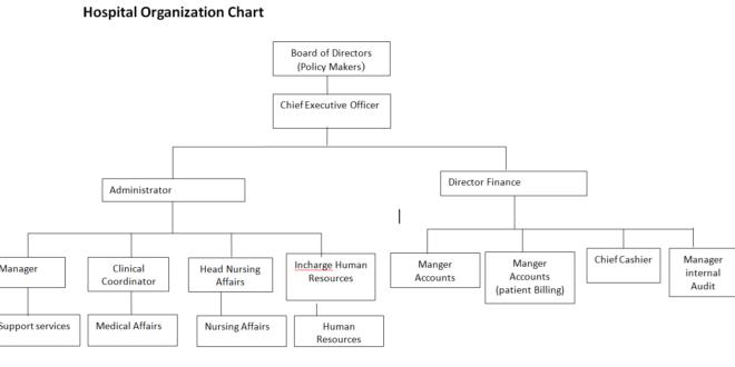 Hospital Internship Report | Internship Activities