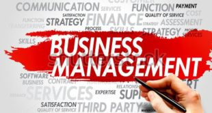Sample Lecture Plan of Strategic Business Management
