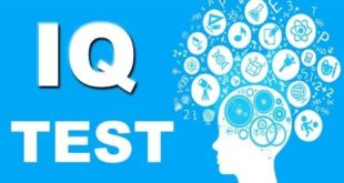 Intelligence Test Question And Answers
