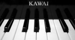 Kawai Piano Company Case Study Solution