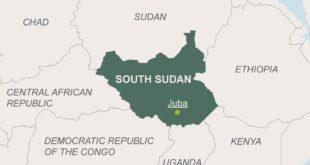 South Sudan Survival
