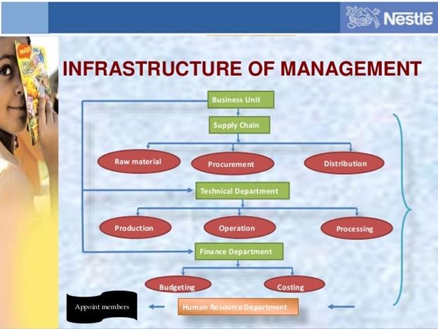 Nestle Pakistan Internship Report | Organizational Structure