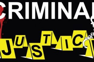The United States Criminal Justice System Amendments