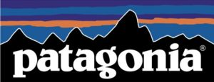 Patagonia Business Management Strategies Case Study Analysis