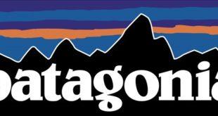Patagonia Business Management Strategies Case Study Analysis