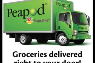Peapod Case Study Solution
