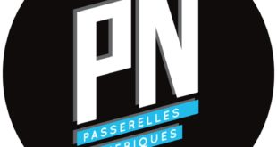 Case Study Analysis Of Passerelles Numerique Organization