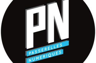 Case Study Analysis Of Passerelles Numerique Organization