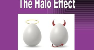 The Halo Effect Literature Review