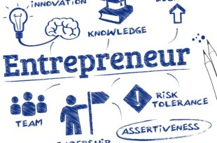 Entrepreneur Interview Report Assignment