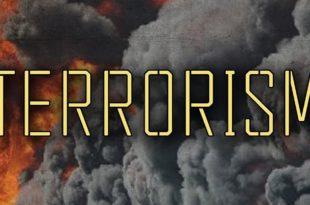 TerrorismEssay