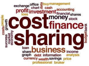 Cost Sharing And Co-Payments In Healthcare Industry