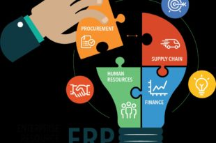 Enterprise Resource Planning Competency