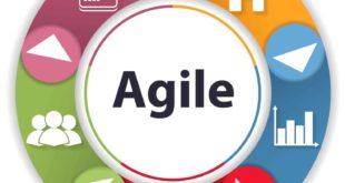 Agile Project Management Research Paper