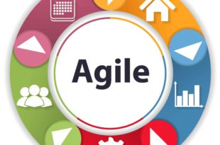 Agile Project Management Research Paper