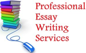 Top 8 Best Essay Writing Websites