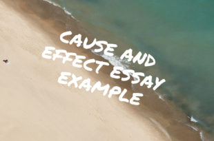 Cause and Effect Essay Example