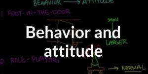 Comparison Between Attitude And Behavior