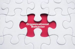 Organizational Behavior Case Study With Solution