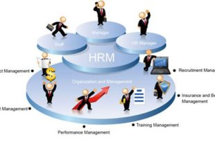 HRM Case Study Solution Example