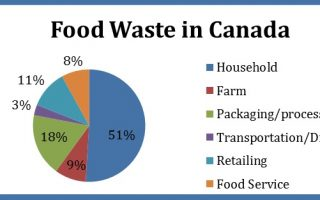 Food Waste In Canada