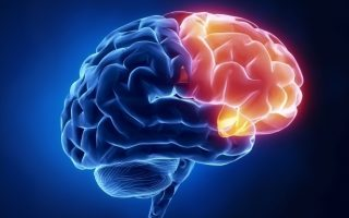 Neuro Rehabilitation Program Evaluation Report