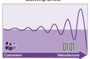 Causes of Bullwhip Effect in Supply Chain