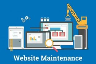 Website Maintenance and Customers Feedback