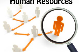 Human Resource Management Reflection Paper Example