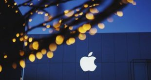 Project Report Of Apple Inc