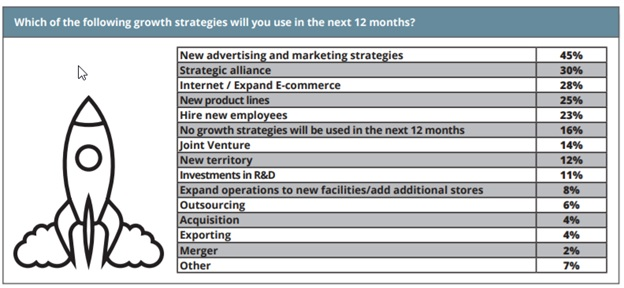 Software Company Marketing Plan Example