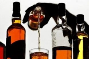 Effects of Alcohol Article Summary