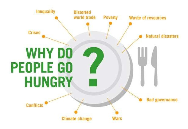 Impact of Political Instability on Hunger in Africa South Sahara