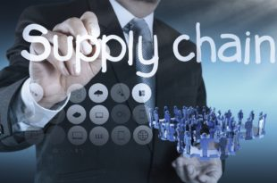 Importance of Supply Chain in Business Processes