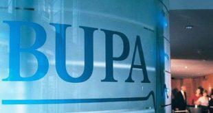 Bupa Insurance Company Business Report Summary