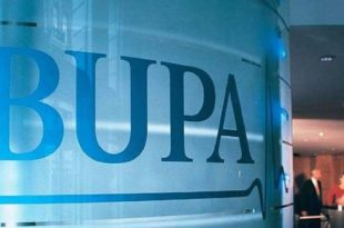 Bupa Insurance Company Business Report Summary