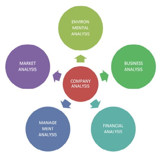 Company Analysis Example