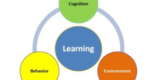 Effectiveness of Cognition and Learning's Research Paper