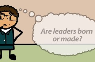 Leaders are Born not Made Summary