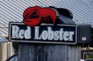Red Lobster Restaurant Case Study Analysis